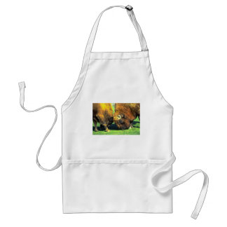 Sparring buffalo aprons