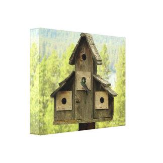Sparrow and Birdhouse Canvas Print