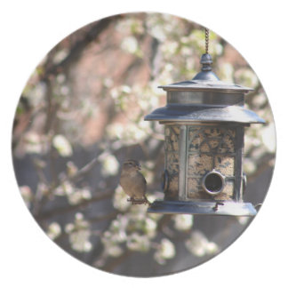 SPARROW AT FEEDER PLATE