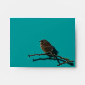 SPARROW BIRD on a Branch Gift Card Envelope