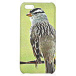 """Sparrow """"Bird on a Wire"""" iPhone 5C Covers"""