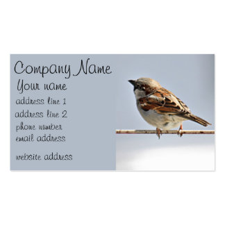 Sparrow Double-Sided Standard Business Cards (Pack Of 100)