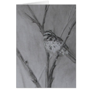 Sparrow Drawing in Charcoal Card