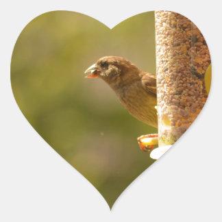 Sparrow eating heart sticker