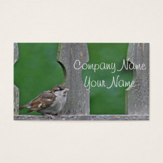 Sparrow fledgling business card