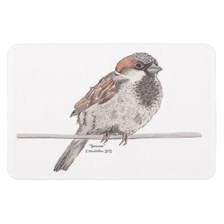 Sparrow Flexible Magnet