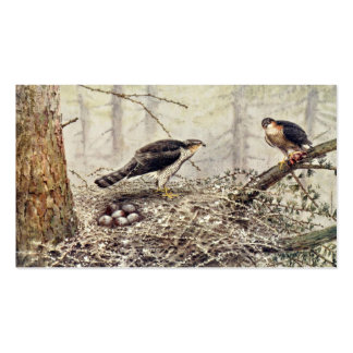 Sparrow Hawks Double-Sided Standard Business Cards (Pack Of 100)