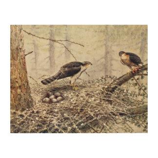 Sparrow Hawks Wood Wall Art