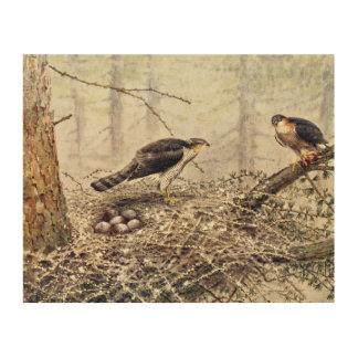 Sparrow Hawks Wood Wall Decor