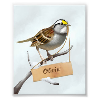 Sparrow Illustration Photo Print