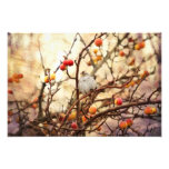 Sparrow in a Crab Apple Tree Photograph