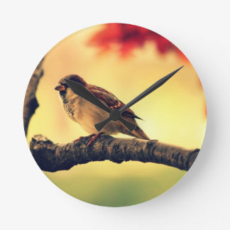 Sparrow in a tree round clocks