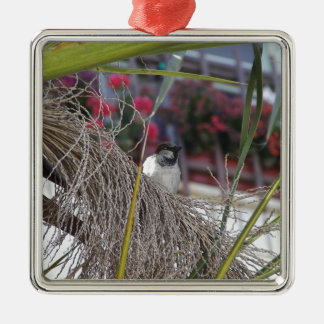 Sparrow in southern Spain Metal Ornament