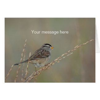 Sparrow in the Grass 2 Greeting Card