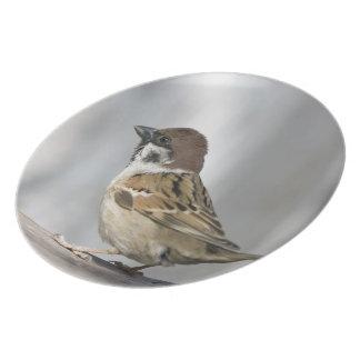 Sparrow Melamine Plate