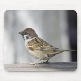 Sparrow Mouse Pad