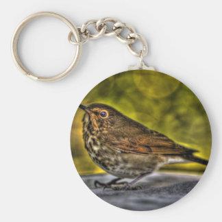 Sparrow of my dreams keychain
