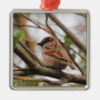 Sparrow on a Branch 3 Metal Ornament
