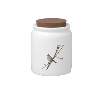 Sparrow on a branch Candy Jar
