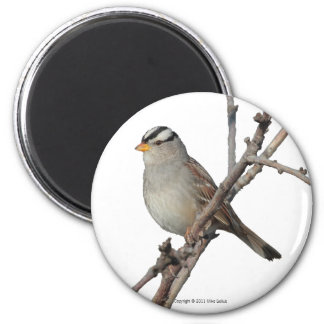 Sparrow on a branch Magnet
