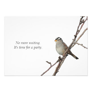 Sparrow on a branch Party Invitation
