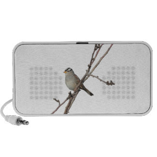 Sparrow on a branch Speakers