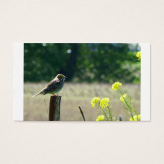 Sparrow on a fence post with flowers business card
