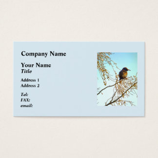 Sparrow on a Winter Branch Business Card