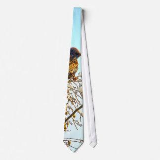 Sparrow on a Winter Branch Neck Tie