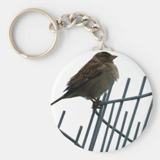 Sparrow on fence - photo basic round button keychain