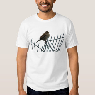 Sparrow on fence - photo tee shirt