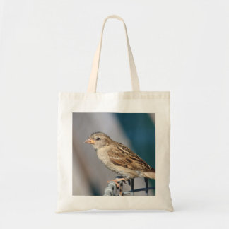 sparrow on the bin budget tote bag