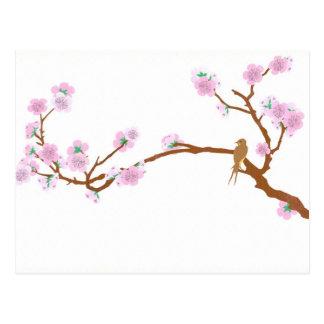 Sparrow on Tree 2 - Postcard