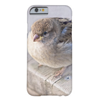 Sparrow - Overweight Barely There iPhone 6 Case