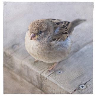 Sparrow - Overweight Napkin