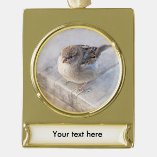 Sparrow - Overweight Gold Plated Banner Ornament