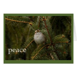 sparrow peace holiday card