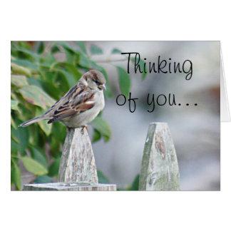 Sparrow photo card