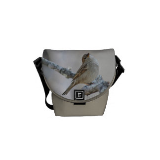 Sparrow photo courier bag