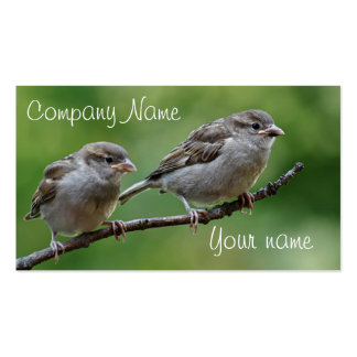 Sparrow photo Double-Sided standard business cards (Pack of 100)