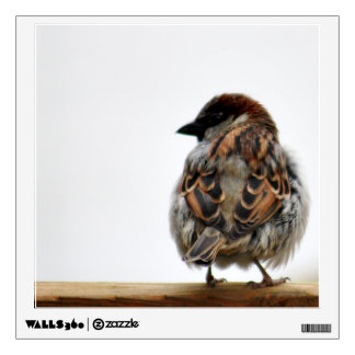 Sparrow photo wall sticker