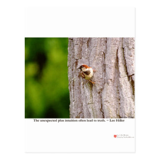 Sparrow Photography W/Truth Quote On Gifts & Tees Postcard