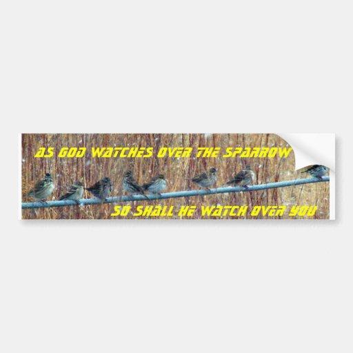 Sparrow scripture car bumper sticker