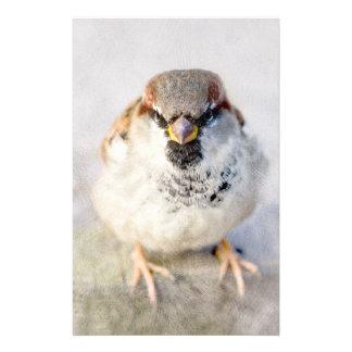 Sparrow - The Warrior Flyer