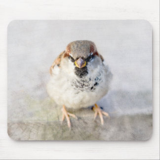 Sparrow - The Warrior Mouse Pad