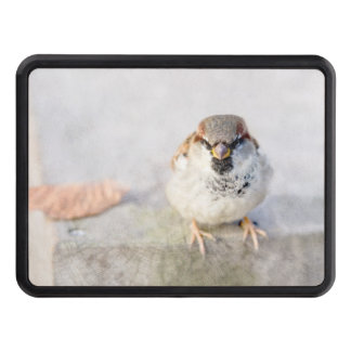 Sparrow - The Warrior Trailer Hitch Cover