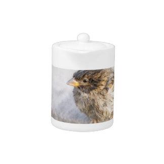 Sparrow - Weather Forecast Epic Fail Teapot