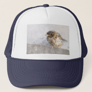 Sparrow - Weather Forecast Epic Fail Trucker Hat