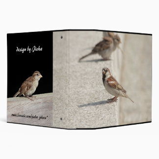 sparrows on the step 3 ring binder