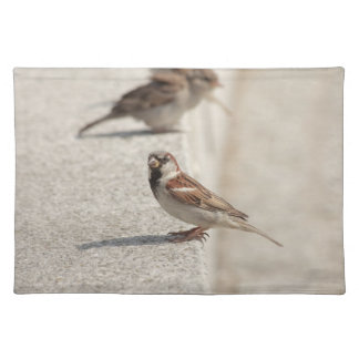 sparrows on the step placemat